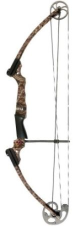 picture of a compound bow